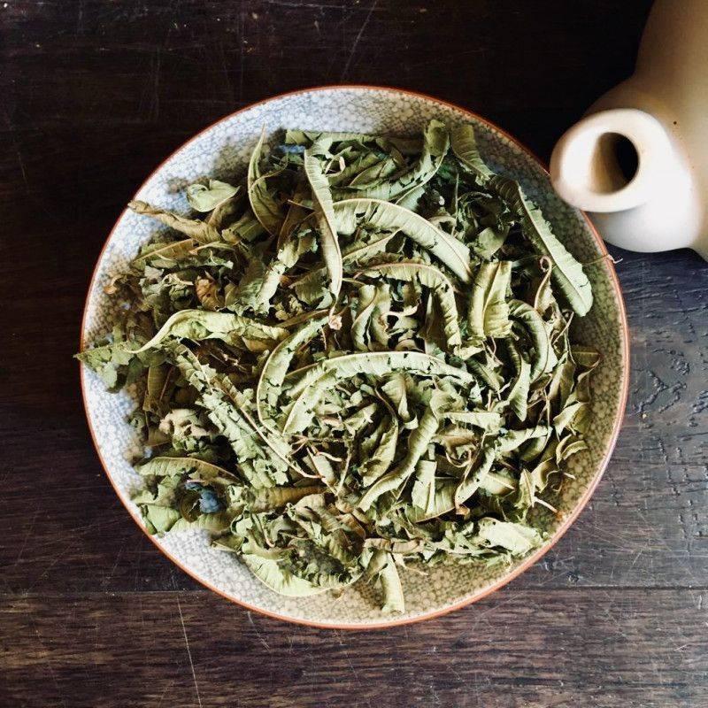 Verbena - Herbal Infusions
