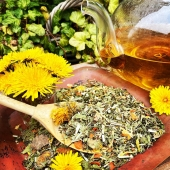 Lemon Verbena, a fresh and powerful herbal blend blend of verbena, melissa, lemon peel, strawberry leaf, lemongrass, carrot and marigold.   This is such a beautiful blend and it's fragrance is just delicious!   As you may be able to tell from the composition, the flavor of this herbal tea is both citrusy and fruity.  The combination of the slightly sour verbena, lemon peel and lemongrass and the sweetness of the strawberry and carrot make this infusion irresistible.   Our Lemon Verbena blend is a very suitable tea to enjoy in the evening. Since it is a herbal blend, it does not contain caffeine. In addition, verbena has a calming effect on the nervous system and helps you to get a good night's sleep.   In short, enough reason to include the beautiful blend in your daily tea routine!   Would you like to try our Lemon Verbena? It is available online and naturally in our store as well. (Link in bio).  #herbaltea #kruidenthee #herballife #vegan #vegansofamsterdam #yoga #yogatea #meditation #healthyliving #healthylifestyle #zen #relaxingtea #eveningtea #bedtimetea #teatime #ilovetea #iloveherbaltea #tealovers #tealoversofinstagram #verbena #verveine #marigold #verbenatea #dandelions #thee #theezetten #theedrinken #theewinkelamsterdam #teashop #thesmallesthouseinamsterdam
