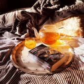 Sometimes all you need is a good book and a cup of tea...   Happy Sunday everyone!   #lazysunday #sundaytea #allyouneedisagoodbook #goodmorning#sundaymorning #sundaymorningtea #quotes #favoritetea #favoritebook #sunlight #sunthroughwindow #metime #myteaandme #relax #mindfulness #healthyliving #healthylifestyle #honeytea #teafromamsterdam #teashopamsterdam #looseleaftea #topshelftea #thesmallesthouseinamsterdam #amsterdamsunday #veganlife #happylife #happysunday
